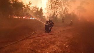 شاهد: رجال الإطفاء يفرّون من ألسنة النيران المشتعلة بإحدى غابات روسيا