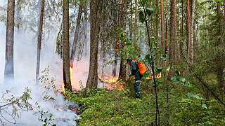Rusya'da orman yangınları