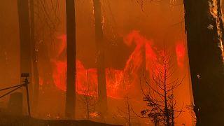 Incêndio de French Camp incontrolável no nordeste da Califórnia