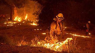 Калифорния: борьба с пожарами продолжается