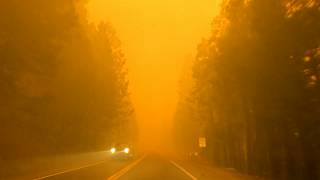 In dem Gebiet rund um die Region Lake Tahoe steigt die Waldbrandgefahr