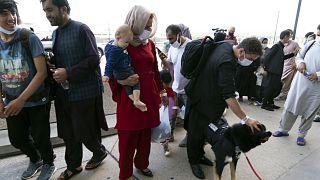 Kabulból Amerikába érkezett afgán család egy Cali nevű szolgálati kutyával