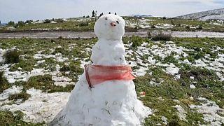 Afrique du Sud : chute de neige inédite