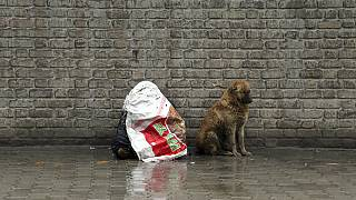 Un perro junto a un hombre cubierto por un plástico en Kabul, en el año 2019