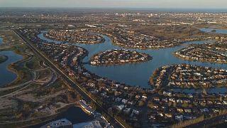 Tem aumentado o número de capivaras em zonas residenciais a norte de Buenos Aires