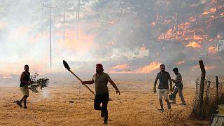 Muğla'nın Marmaris ilçesindeki orman yangını