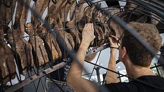 Скелет самого крупного трицератопса продадут на аукционе в Париже