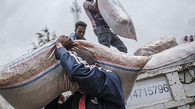 Ethiopie : des rebelles ont pillé de l'aide humanitaire, selon l'USAID