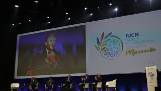 """Da """"Indiana Jones"""" a Macron: ecco il variegato fronte ambientalista a Marsiglia"""