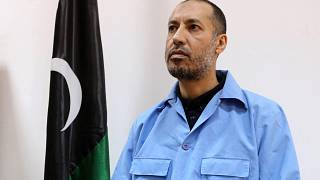 Gaddafi's son freed from prison, flies directly to Turkey