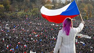 A woman waves a Czech flag from a roof as people take part in a large anti-government protest in Prague, Czech Republic, Saturday, Nov. 16, 2019