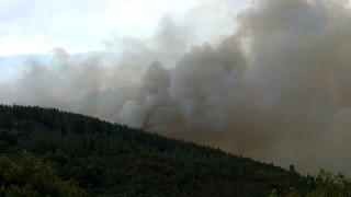 Galicia fires