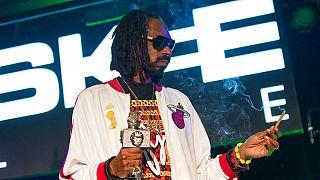 ABD'li rap müzik sanatçısı Snoop Dog, esrar bitkisini sıkça kullanmasıyla biliniyor. Snoop Dog'un bu özelliği Hollywood filmlerine dahi konu oldu.