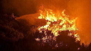 İspanya'da orman yangınına müdahale / Arşiv