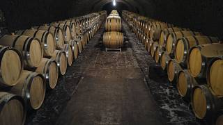 Empty barrels for the next harvest in autumn in the cave of Champagne producer Anselme Selosse in Avize, in the Champagne region, July 28, 2020.