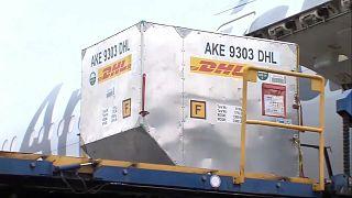 Imagen del primer cargamento con vacunas de Pfizer-BioNTech que llega a Argentina