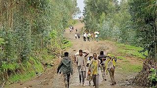 Ethiopie : de nouvelles victimes des forces du Tigré en Amhara