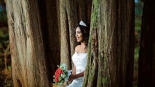 İngiltere'nin Bristol kentinde, ağaç kesimine karşı çıkmak için 74 kadın, ormanlık alandaki ağaçlarla evlendi