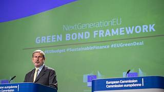 المفوض الأوروبي المسئول عن الميزانية والإدارة، يوهانس هان