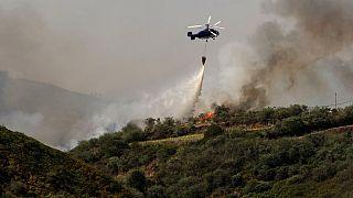 İspanya'da 6 gündür devam eden orman yangınlarına 50 uçak ve helikopterden oluşan bir filo müdahale ediyor.