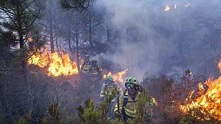 Bomberos luchan contra las llamas cerca de Jubrique, en la provincia de Málaga (España)