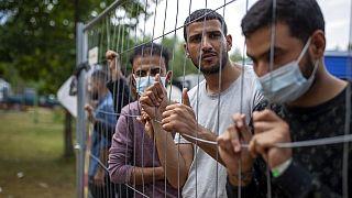 Μετανάστες στα σύνορα Λευκορωσίας - Λιθουανίας
