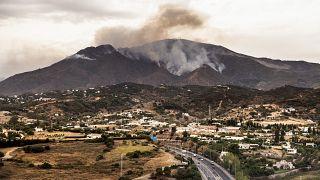Incendie sous contrôle dans le sud de l'Espagne