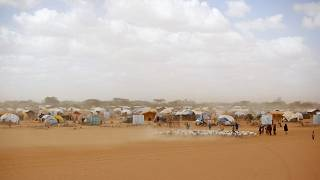 Somali refugees herd their goats at the Ifo refugee camp outside Dadaab, eastern Kenya