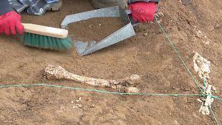 Les fouilles à Orozmani, non loin de Dmanissi