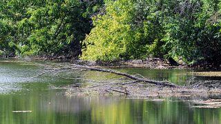 A Duna holtága Béda-Karapancsa tájegységnél 2012. szeptember 11-én