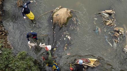 Afrique du Sud : journée de nettoyage dans un quartier de Johannesburg