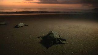 Praia Ribeira das Pratas