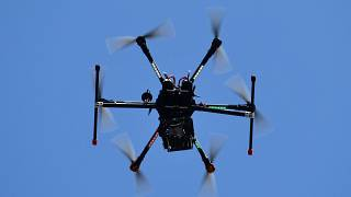 The Sappe prison union said they believe the gun had been smuggled in using a drone.