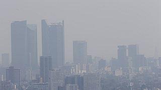 WHO empfiehlt deutlich strengere Richtwerte für Luftschadstoffe
