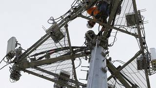 An operator performs maintenance on a phone masts, May 22, 2017 in High Ridge, Mo.