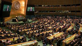 Birleşmiş Milletler Genel Kurulu