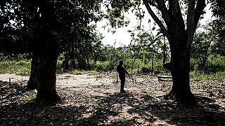 RDC : un journaliste inculpé dans l'affaire du meurtre des experts de l'ONU