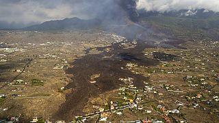 La Palma: veszélyben a banán és tömegek megélhetése