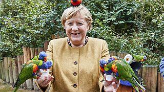 Angela Merkel mit Vögeln in Marlow vor der Bundestagswahl