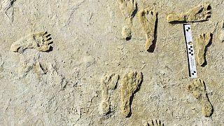 ABD'de 23 bin yıl öncesinde dayanan ayak izleri