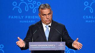 رئيس الوزراء المجري فيكتور