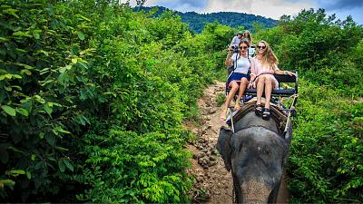 Why riding an elephant on holiday is unethical and cruel