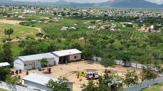 Cameroun : la '' Grande Muraille verte '' érigée à Minawao