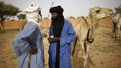'Cannon fodder' ? Joblessness, jihadists stalk Niger's nomad youth