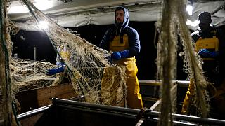 According to estimates, EU fisheries now face a 25% reduction of their catch value in UK waters.