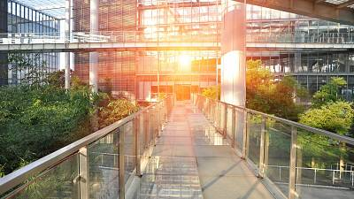 A walkway in a lush green office environment.