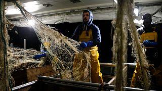 Muitos pescadores franceses em risco de perder o acesso às águas britânicas