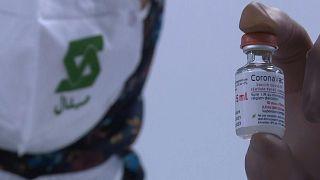 لقاح كورونافاك المضاد لفيروس كورونا المصنع في الجزائر
