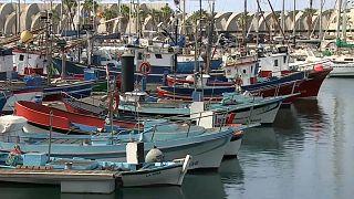 Más de 150 familias viven de las capturas de estos barcos que ahora están atracados en Tazacorte