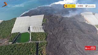 Captura de un vídeo IGME de la lengua de lava avanzando entre las plataneras